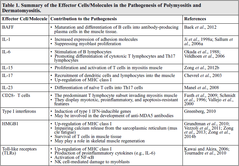 Polymyositis and Dermatomyositis: Novel Insights into the