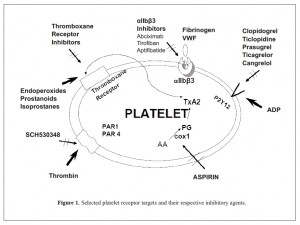 Selected platelet receptor targets and their respective inhibitory agents.