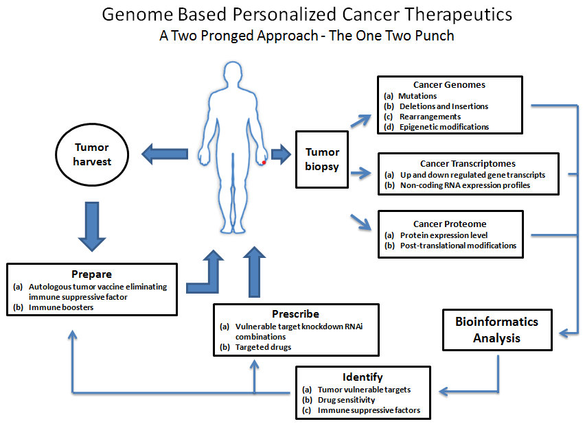 RNA Interference and Personalized Cancer Therapy - Donald D