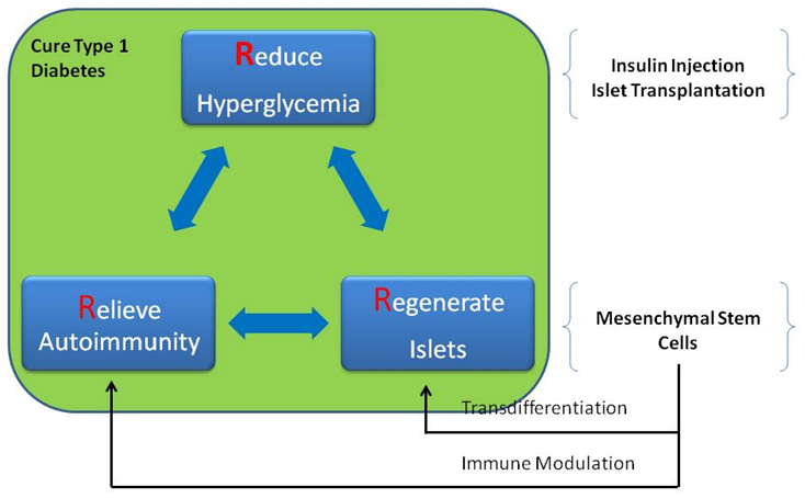 Mesenchymal Stem Cell-Based Therapy for Type 1 Diabetes