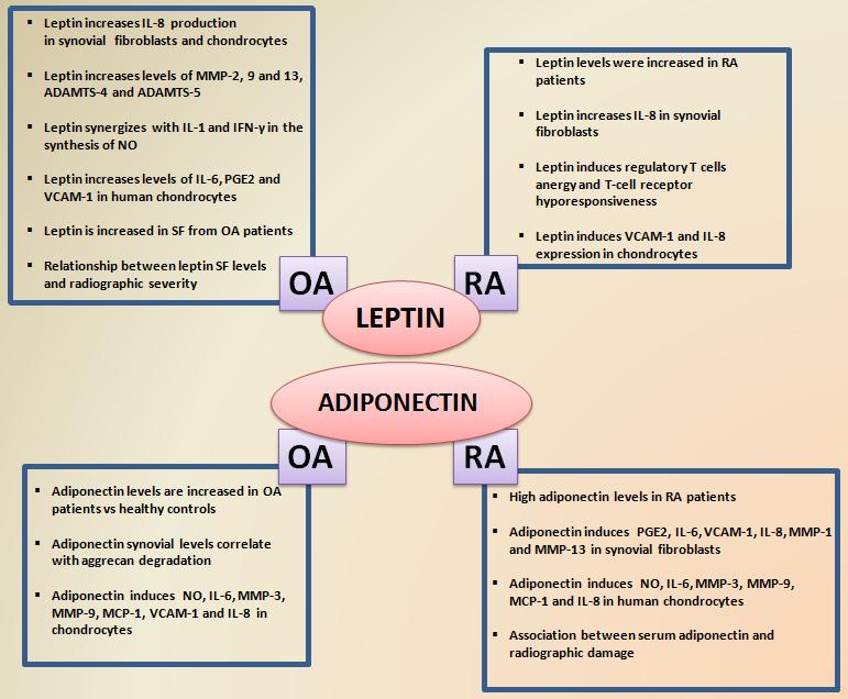 Related Keywords & Suggestions for Rheumatoid Arthritis Vs ...