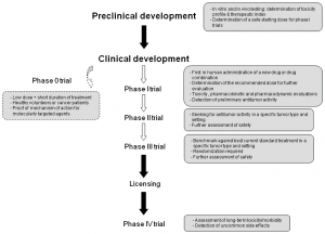 Figure 1. Main steps of anti-cancer drug development.