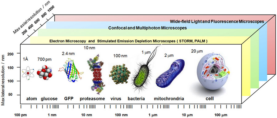 Advances in the Integration of Optical and Mass Spectrometry