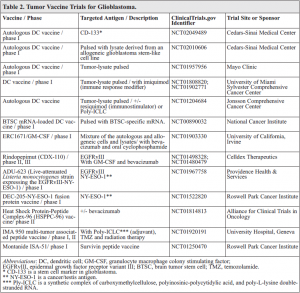 Novel Approaches and Mechanisms of Immunotherapy for