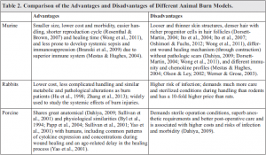 Current Experimental Models of Burns - Miao Qu - Discovery